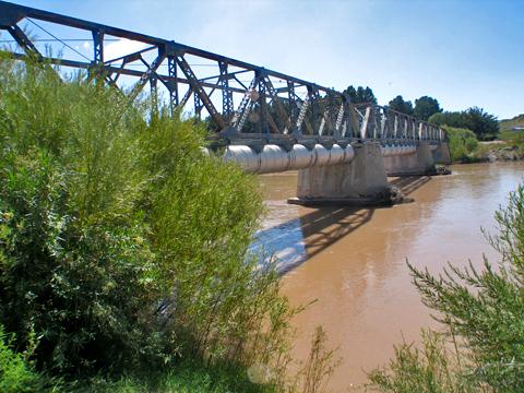 Rio Grande River - Mesilla